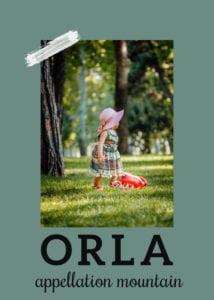 baby name Orla