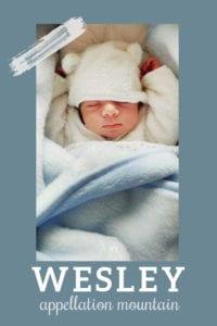 baby name Wesley