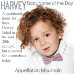 Harvey: Baby Name of the Day