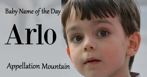 Arlo: Baby Name of the Day