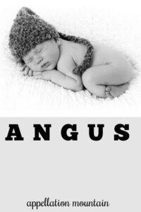 baby name Angus