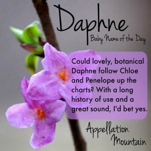 Daphne: Baby Name of the Day