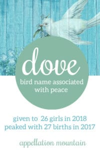 Dove: Baby Name of the Day