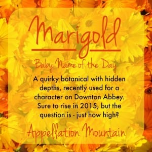 Marigold: Baby Name of the Day