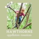 Baby Name Hawthorne: Literary and Outdoorsy