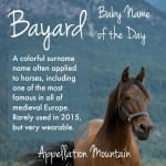 Bayard: Baby Name of the Day