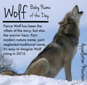 Wolf: Baby Name of the Day