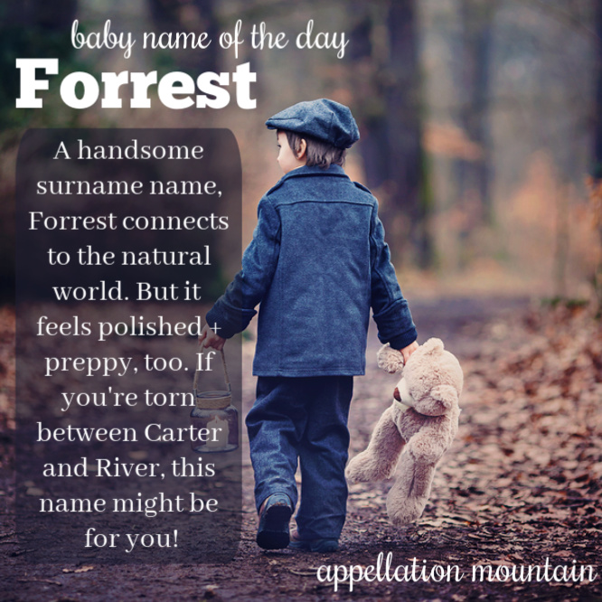 Forrest: Baby Name of the Day - Appellation Mountain