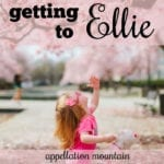 Ellie: Getting to Ellie from Eleanor, Ellery, and More