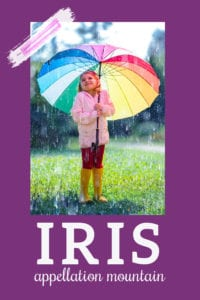 baby name Iris