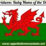 Ceridwen: Baby Name of the Day