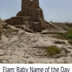 Elam: Baby Name of the Day