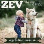 Zev: Baby Name of the Day