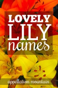 Lily Names