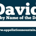 David: Baby Name of the Day