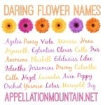 Azalea and Edelweiss: Daring Flower Names