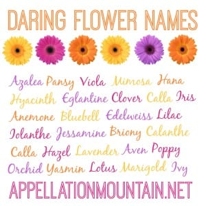 Daring Flower Names