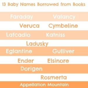 13BorrowedBooks