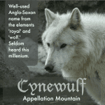 Cynewulf: Baby Name of the Day
