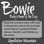 Bowie: Baby Name of the Day