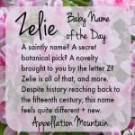 Zelie: Baby Name of the Day
