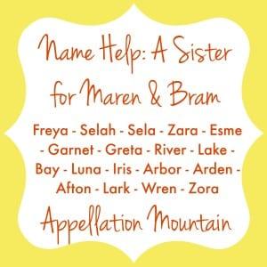 A Sister for Maren & Bram