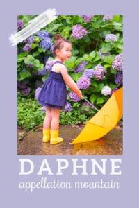 baby name Daphne