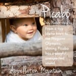 Picabo: Baby Name of the Day