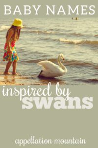 baby names inspired by swans