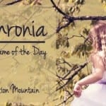 Sophronia: Baby Name of the Day