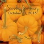Sunday Summary 10.11.15