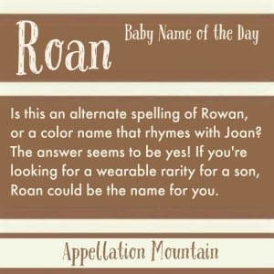 Roan: Baby Name of the Day