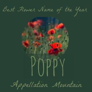 Celebrity Baby Names: Poppy