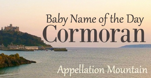 Cormoran: Baby Name of the Day