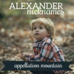 Unexpected Nicknames for Alexander