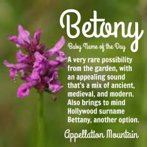 Betony: Baby Name of the Day