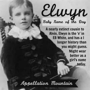 Elwyn: Baby Name of the Day