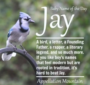 Jay: Baby Name of the Day