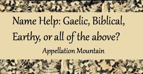 Name Help: Gaelic, Biblical, Earthy or all of the above?