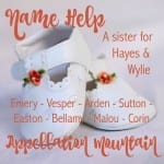 Name Help: A Sister for Hayes and Wylie