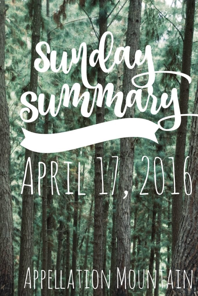 Sunday Summary 4.17.16