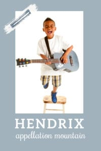 baby name Hendrix