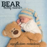 Beary Boyish: Bear Names for Boys