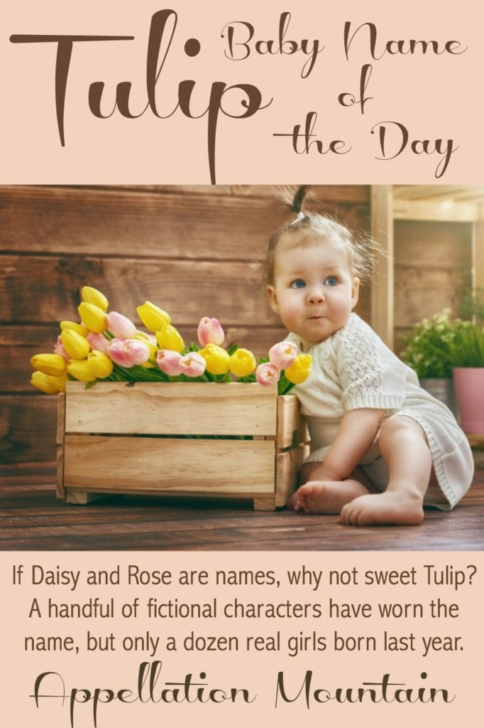 Tulip: Baby Name of the Day