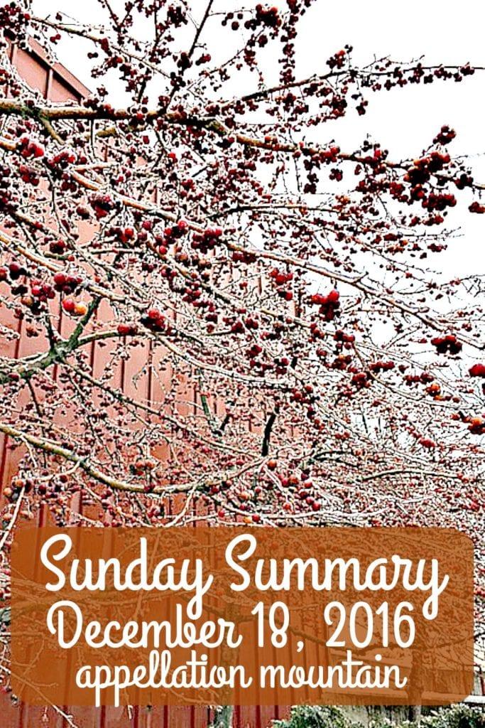 Sunday Summary 12.18.16