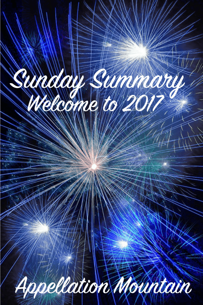 Sunday Summary 1.1.17