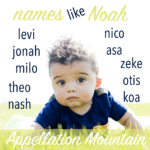 Names Like Noah: Alternatives to the Top Ten Names