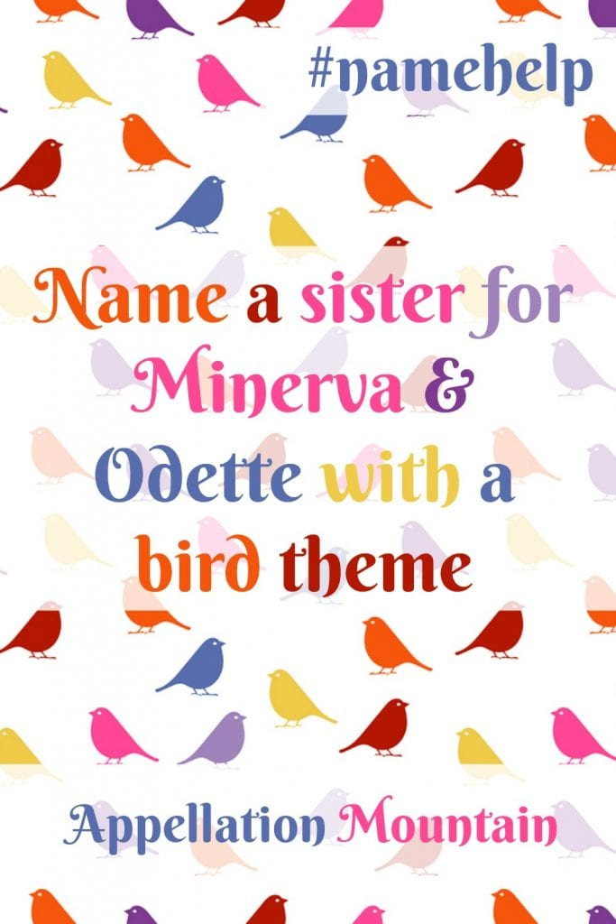 Name Help: Birds