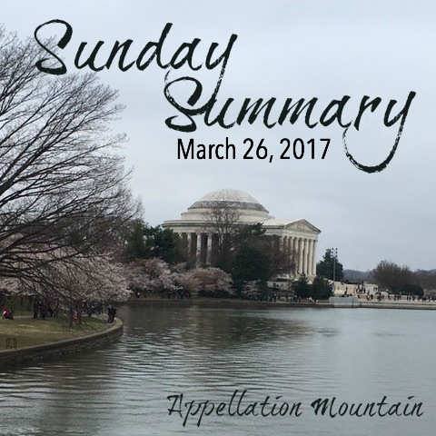 Sunday Summary 3.26.17
