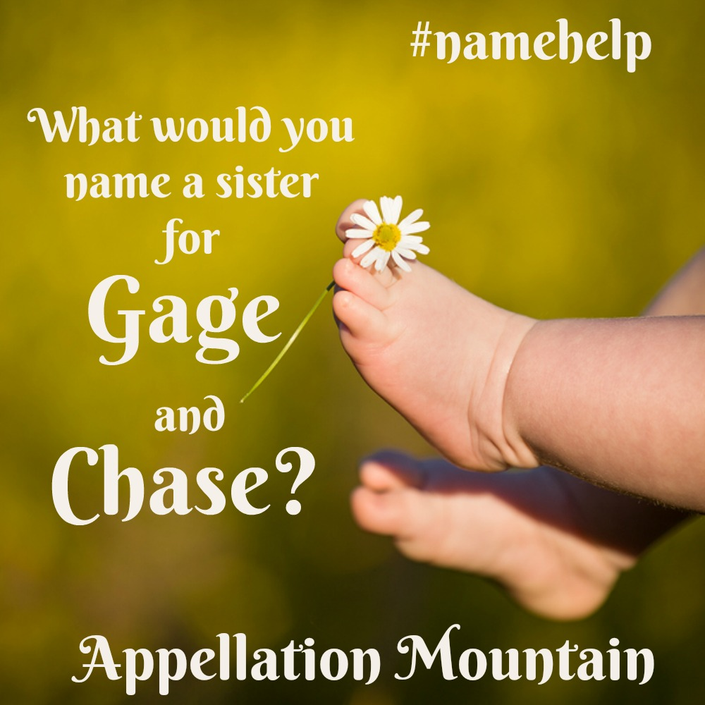 Name Help: A Sister for Chase and Gage - Appellation Mountain